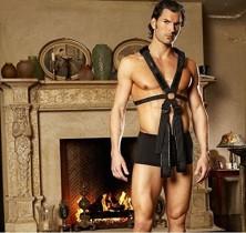 Body Harness Restraint Kit...